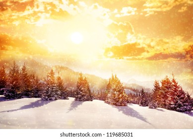 Winter scenic of spruce forest in mountains with snowfall in Kazakhstan