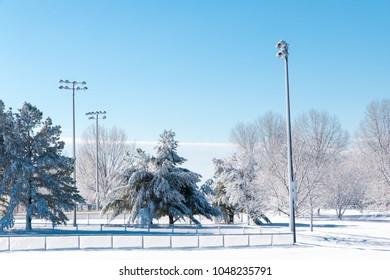 Winter season in city park.