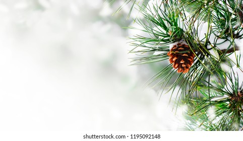 Winter season holiday border background with christmas tree and pone cone closeup. Fir tree brunch with show frame over bokeh background with copyspace. Christmas and new year card design.