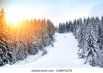 Winter season on a public mountain resort. Landscape, winter magic and ski slopes