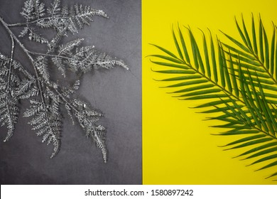 winter silver tree branch on a gray background. tropical palm tree branch on a yellow background. The concept of changing the seasons. Winter and summer.