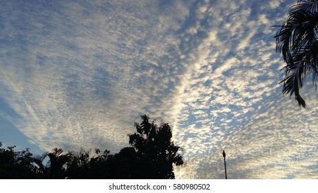 Winter sky in the evening sunlight