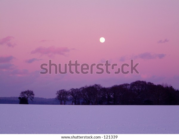 winter sky moon red pink blue landscape snow trees color tree field