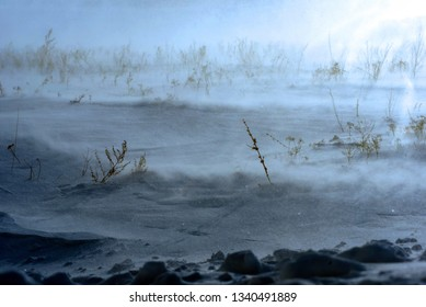 Winter snow blizzard across a barren field with bare plants and weeds with natural sunlight
