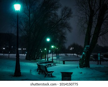 winter snow forest bench lights