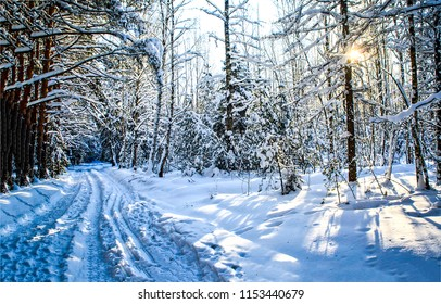Winter snow forest sunset road landscape. Sunset road in winter snow forest. Winter snow forest trail sunset view