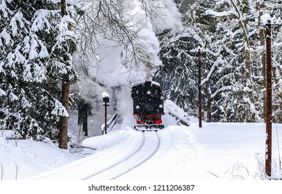 Winter snow forest train ride scene. Winter train ride view. Train ride in winter snow forest. Winter train snowy forest