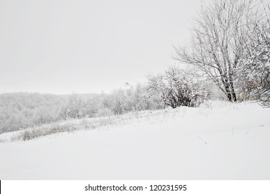 Winter snow landscape with two birds on a branch in the distance