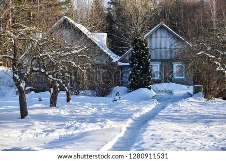Winter snow landscapes in the village