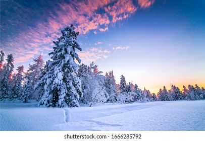Winter snow nature  landscape in snowy forest at Christmas morning scene - Shutterstock ID 1666285792