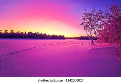 Winter snow nature sunset landscape. Sunset winter snow forest panorama. Christmas wonderland winter snow sunset background