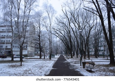 Winter and snow on the streets and parks of Zageba