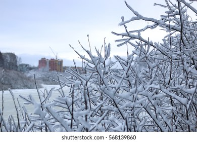 winter snow on tree construction background