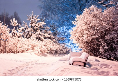 Winter snow parks bench tree scenic