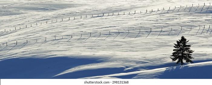 Winter snow scene with fences on a farm in New Brunswick, Canada.