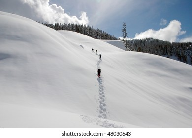 A winter snow shoe hiking view near Whistler, BC, Canada.