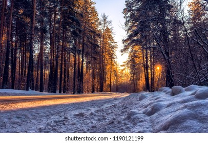 Winter snow sunset forest road view. Sunset winter snow forest road. Sunset winter forest road view. Winter sunset snow forest road scene