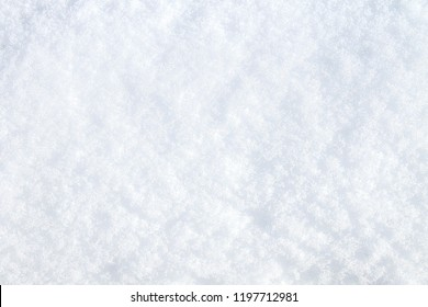 Winter snow. Snow texture Top view of the snow. Texture for design. Snowy white texture. Snowflakes.