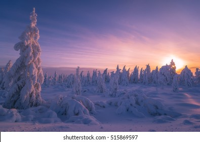 Winter snowscape with forest, trees and snowy cliffs. Blue sky. Winter landscape.