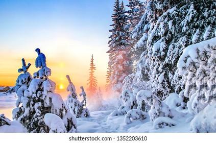 Winter snowy forest sunset scene. Sunset winter forest snow. Winter forrest sunset scene. Sunset snow forrest in winter season