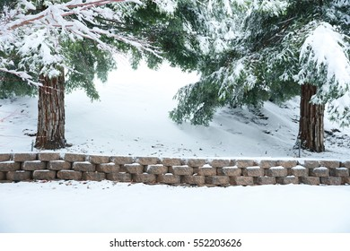 A winter snowy mountain backdrop with a low sitting wall and redwood trees in the background.