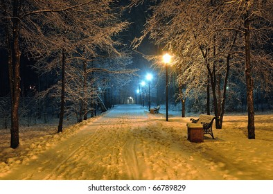 Winter snowy park