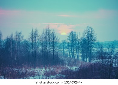 Winter snowy scenery. Field covered with snow at sunset