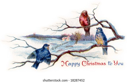 Winter Songbirds - a 1919 vintage Christmas illustration