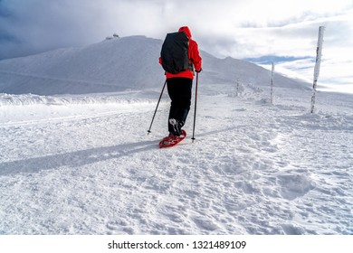 Winter sport activity. Woman hiker hiking with backpack and snowshoes snowshoeing on snow trail. Beautiful landscape with coniferous trees and white snow.