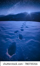 The winter starry night in a carpathian mountain valley with track on a fresh snow. Majestic landscape. Ukraine, Europe