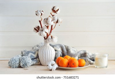 Winter still life . cotton and tangerines on a wooden table. Cotton in white vase. White wall, wooden table. Mandarins  on a plate, grey scarf, white candle. Winter decor.  Composition of cotton