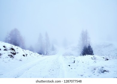 Winter storm near mountains of Belluno at daylight. Snow covered road on foreground. Vibrant colors. Veneto region of Italy