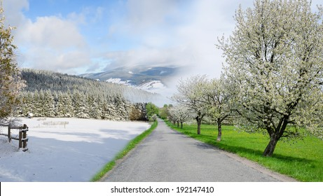 winter and summer changing season, weather concept with road