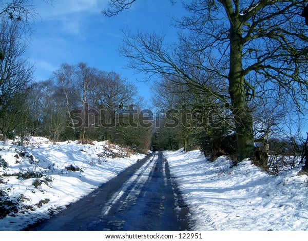 Winter sun shine blue sky snow white clouds field tree trees holidays christmas time road hill