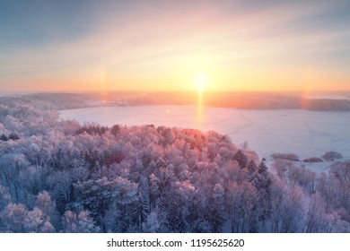 Winter sunrise. Winter forest with frost. Aerial winter landscape. Bright sun illuminates trees with frost. Christmas background.