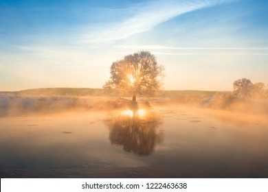 Winter sunrise with sunbeams and sunshine. Frosty tree against blue sky illuminated by rising sun. Lonely tree reflects in the lake in mist. Colorful winter background with warm sunlight.