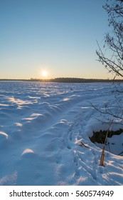 winter sunset over the corn field covered by snow