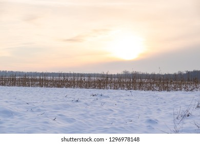 winter sunset over the frozen snowy filed