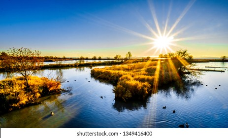 Winter Sunset over ocean side Wetlands of the Reifel Bird Sanctuary in the Alaksen National Wildlife Area on Westham Island near Ladner, British Columbia, Canada