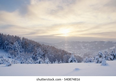Winter sunset snow field on top of mountain on the background of taiga forest and hills