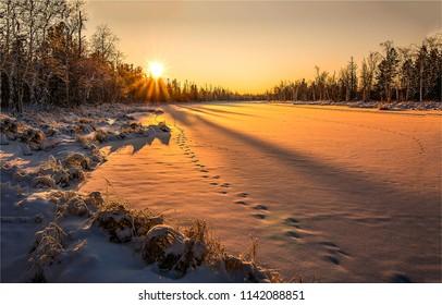 Winter sunset snow nature landscape. Sunset winter snow forest panorama. Winter snow sunset forest background