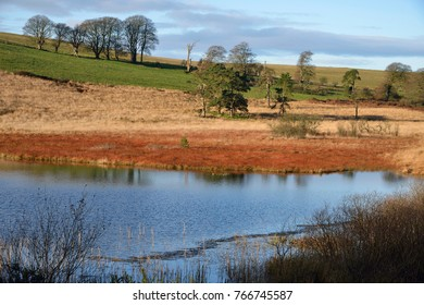 Winter Sunshine on Waldegrave Pool & North Hill 