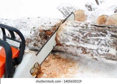 winter time chainsaw saws birch log, firewood