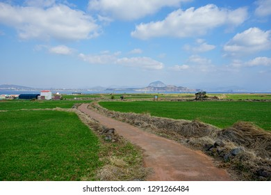 Winter time in Gapa Island, Jeju island