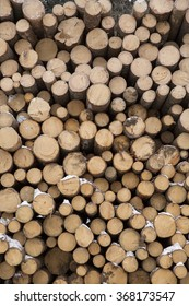 Winter is the time for logging