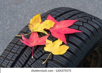 winter tires with colorful autumn leaves