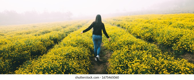 Winter travel relax vacation concept, Young happy traveler asian woman with sweater walking on yellow Chrysanthemum flower field with fog in garden at Chiang Mai, Thailand