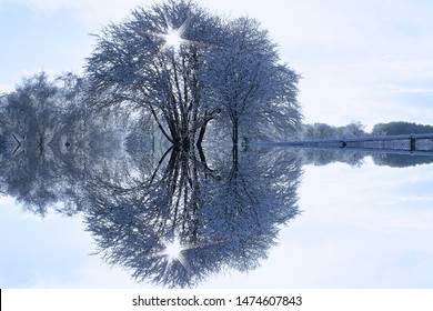Winter Tree symmetry.  A photo with a symmetry effect applied.  Taken mid winter with snow on the ground in Norfolk UK.