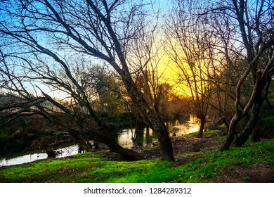 Winter trees on the banks of Umia river in Pontearnelas village at sunset