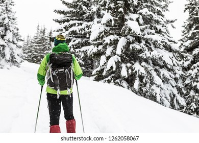 Winter trek in white snowy forest. Man hiking in winter woods. Travel and healthy lifestyle outdoors in beautiful nature.